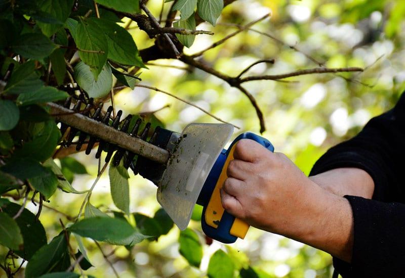 Tarifs bricolage jardinage tva 20 service et aide for Tarif entretien espace vert